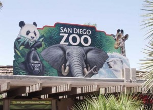 San-Diego-Zoo-California